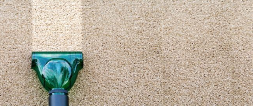 Local Professional Carpet Cleaning Company