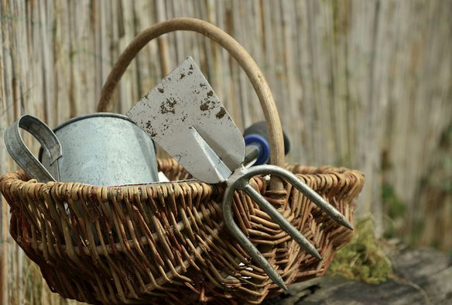 Store the gardening tools safely
