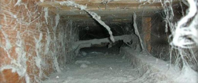 professional air duct cleaning 1