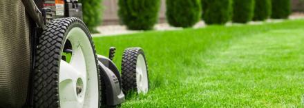 lawn mowers near me
