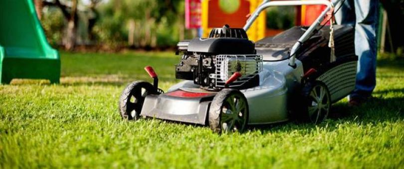 Professional Lawn Mowing Companies Near Me