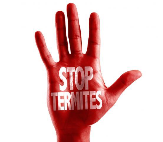 Stop Termites